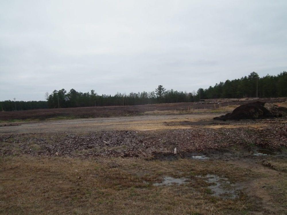 17 42 acres of land 1024x768 1