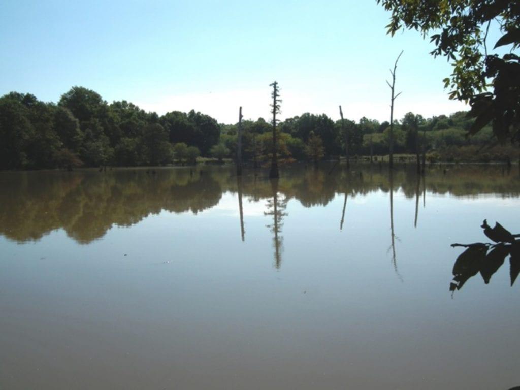 26 Oxbow Lake for Fishing 1 1024x768 1