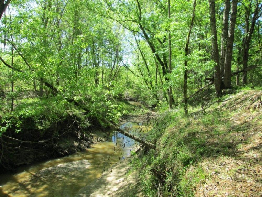 7 Creek 1024x768 1