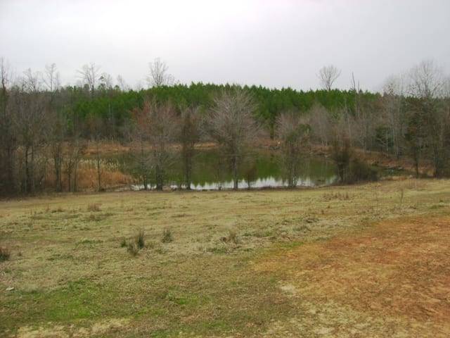 Big Black 339 Pond