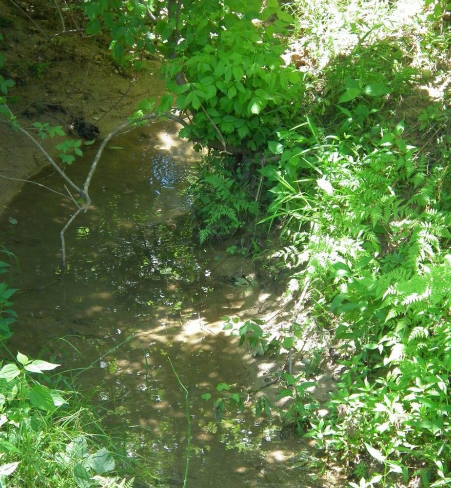 Creek 4 947x1024 1