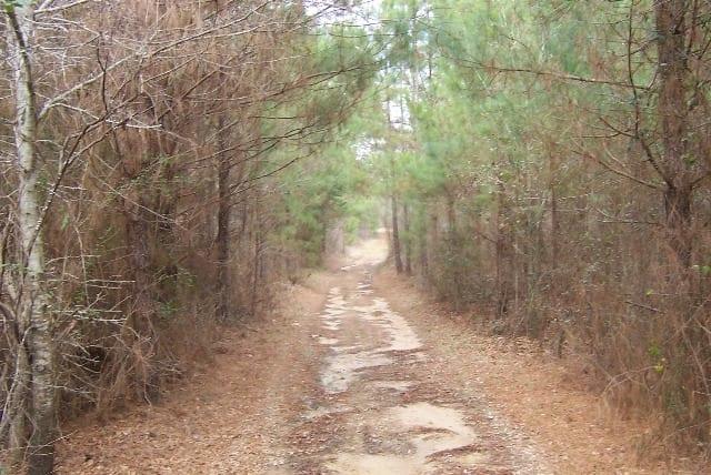 Crossroads Road 27 004
