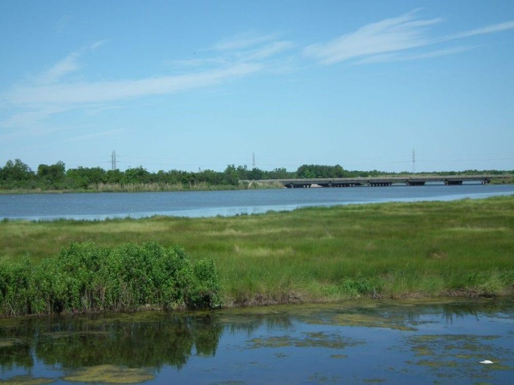 Land for sale in Louisiana min 1024x768 1