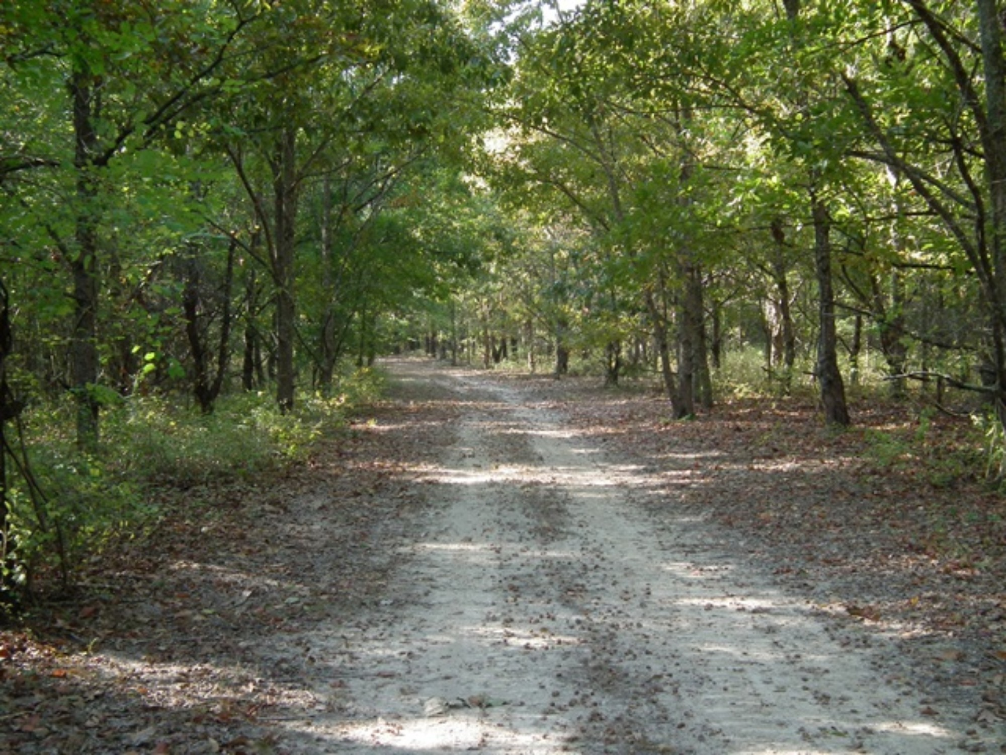 14-Well-Maintained-ATV-Trails