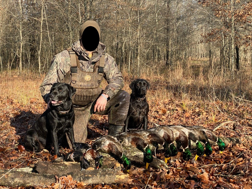 41-Mallard-Duck-Hunting